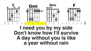 A Year Without Rain (Selena Gomez) Chord and Lyrics Play-along