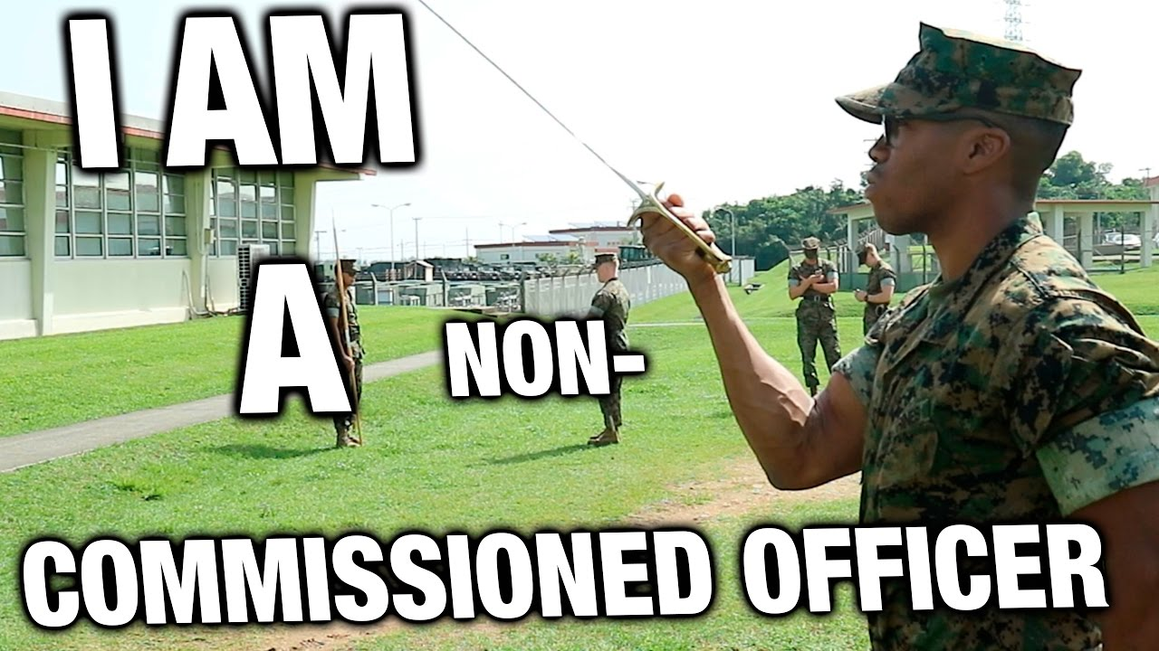 why i want to be an nco Why i want to be an nco why i want to be a non-commissioned officer i want to be a nco because i want responsibility to lead soldiers i think i will be a good nco i was put in a nco slot before in my last unit i had respect from other soldiers in my squad when i was put in charge i believe have the qualities to motivate other soldiers.