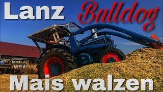 Lanz Bulldog Mais walzen - Sound Pur [D4016]