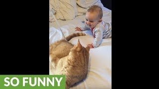 Baby can't stop laughing at playful cat