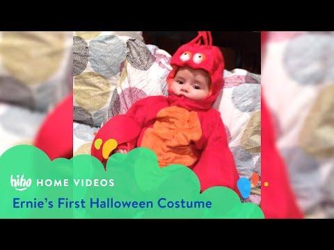Ernie's First Halloween Costume | Home Videos | HiHo Kids
