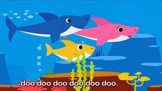 Baby Shark   Animal Songs   Songs for Children  Canções para crianças 2019