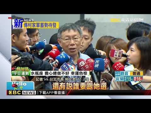 傳柯P指派蔡壁如輔選 擔任柯家軍「總顧問」