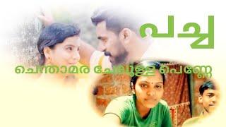 Chenthamara Chelulla Penne| Pacha Naadan Paattu Malayalam Albm Jafarillath| REALVOICE WITHOUT MUSIC
