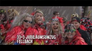 Fasnetsumzug Fellbach 2017