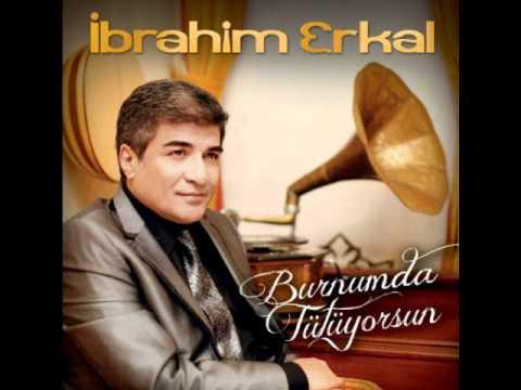 İbrahim Erkal - Gittin ( 2012 )