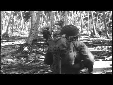 US Army troops advance through jungle on Makin Island, Gilbert Islands, in World ...HD Stock Footage