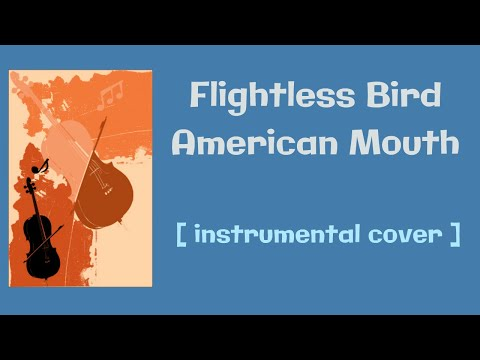 Flightless Bird, American Mouth  instrumental   quartet