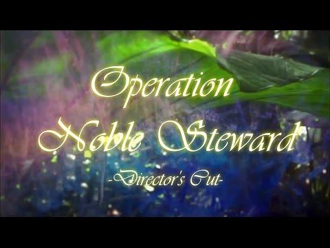 1st Earth Battalion: Operation Noble Steward (Director's Cut)
