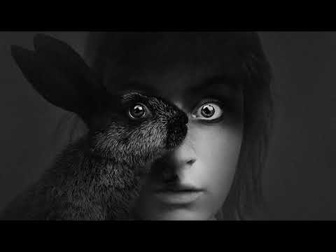 Joyhauser - Rabbit (Original Mix)