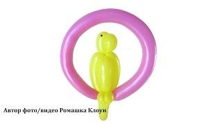 ПОПУГАЙ ИЗ ДЛИННЫХ ШАРИКОВ ШДМ How to Make a Balloon Parrot
