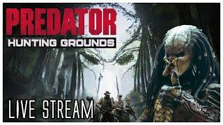 Predator Hunting Grounds - Live Stream