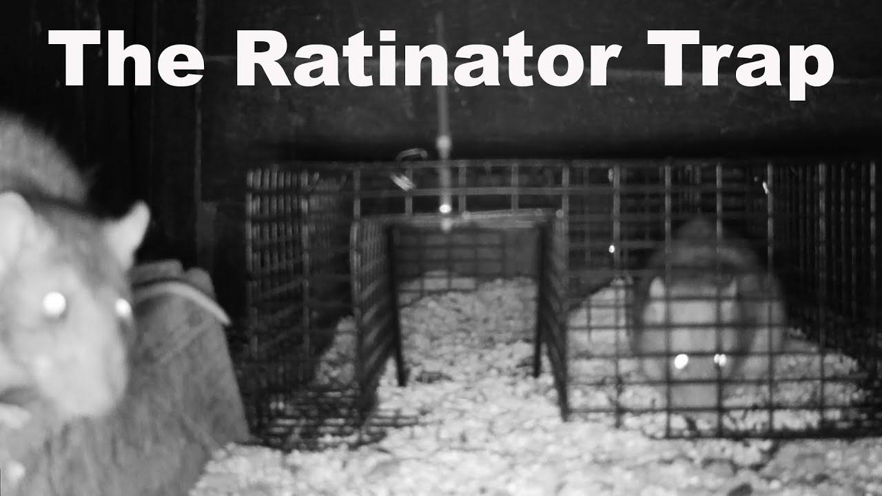 the-ratinator-rat-trap-huge-fail-mousetrap-monday