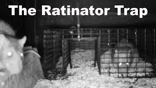 The Ratinator Rat Trap - Huge Fail. Mousetrap Monday