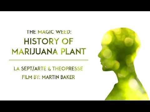 The Magic Weed: History Of Marijuana Plant