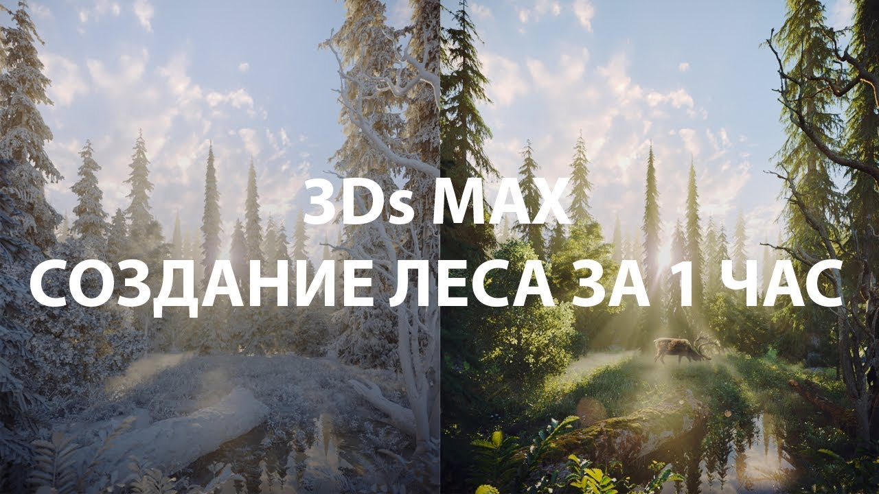 Уроки 3Ds MAX: Создание леса за один час. CORONA RENDERER