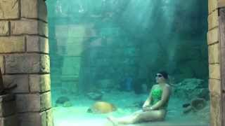 Mermaid Melissa 4:32 female breath hold record underwater