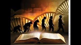 rozwój duchowy w świecie ciemności ,jak ewoluują istoty mroku ,dlaczego na ziemi jest zło?