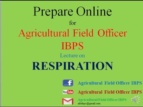 RESPIRATION   Prepare Online  for Agricultural field officer IBPS