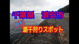 今回の千葉にのいいトコ見つけ隊は 浦安市 三番瀬 の動画です。 無料で...
