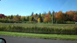 Autoroute du Québec en automne