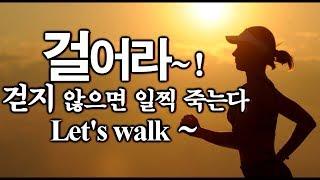 걸어라~ 걷지 않으면 일찍 죽는다~ 걷기 운동의 놀라운 효과~~♬  Let