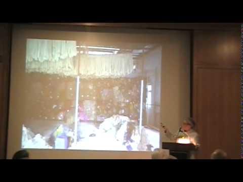 Weaving Beauty, Social Responsibility and Environmental Concerns
