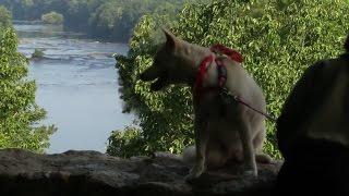 Connect NC Supports North Carolina State Parks thumbnail