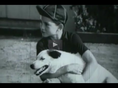 "Comedy-Drama! ""Mr Celebrity"" 1940s Classic Movie Film Full Length Old Black"