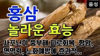 [#홍삼효과] 홍삼의 …