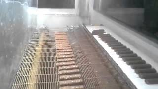enrobing machine, глазировочная машина, çikolata kaplama makinesi(, 2015-06-07T10:34:50.000Z)
