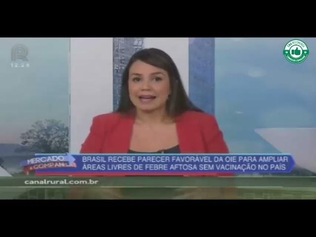 Brasil recebe parecer favorável  para ampliar áreas livres da febre aftosa sem vacinação no país