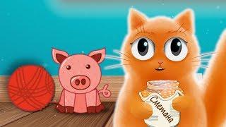 Кот Джем с баночкой сметаны. Снова эта свинка все съела!!!