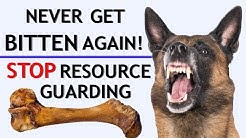 How To Stop Food Aggression & Resource Guarding + Stop Biting When Giving Treats