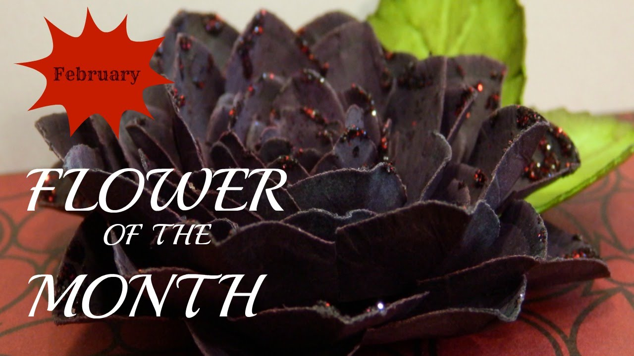 Flower Of The Month Diy Paper Flowers February 2015 Black Dahlia