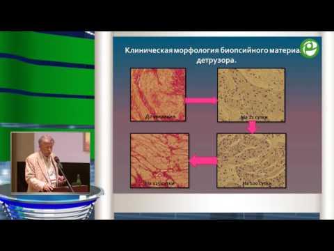 Николаев С Н - Ботулинотерапия нейрогенной дисфункции мочевого пузыря детей с синдромом спинальн