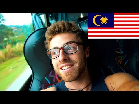 TRAVELLING TO CAMERON HIGHLANDS, MALAYSIA