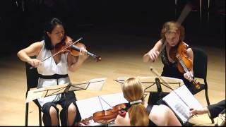 Modern Music » Lerdahl, String Quartet No. 2 » Daedalus Quartet