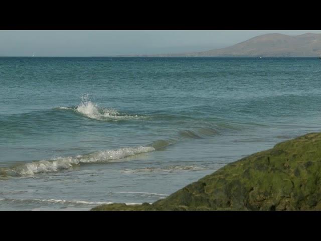Playa Grande, territorio de Summer Dreams