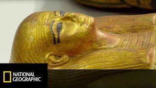 To znalezisko w grobowcu Tutanchamona szczególnie zaintrygowało Cartera [Tajemnice złotego faraona]