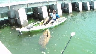 Fishing Rod Big Catch Kayak Video! Goliath Grouper! Cape Coral Man Catches Fish + Chew On This