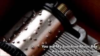 You are my Sunshine【Music Box】
