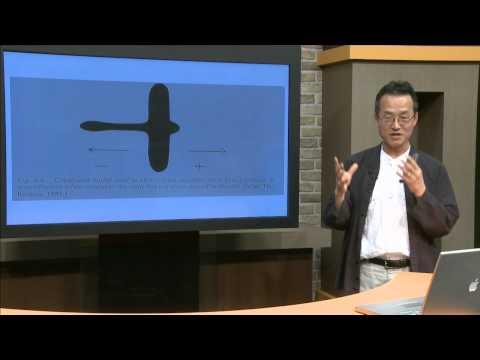 Are We Animals? : Animal Behavior and Human Nature (Professor Jae Chun Choe)