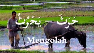 Kosakata Bahasa Arab tentang Pekerjaan {المهنة} lagu : Geisha- Lumpuhkan Ingatanku