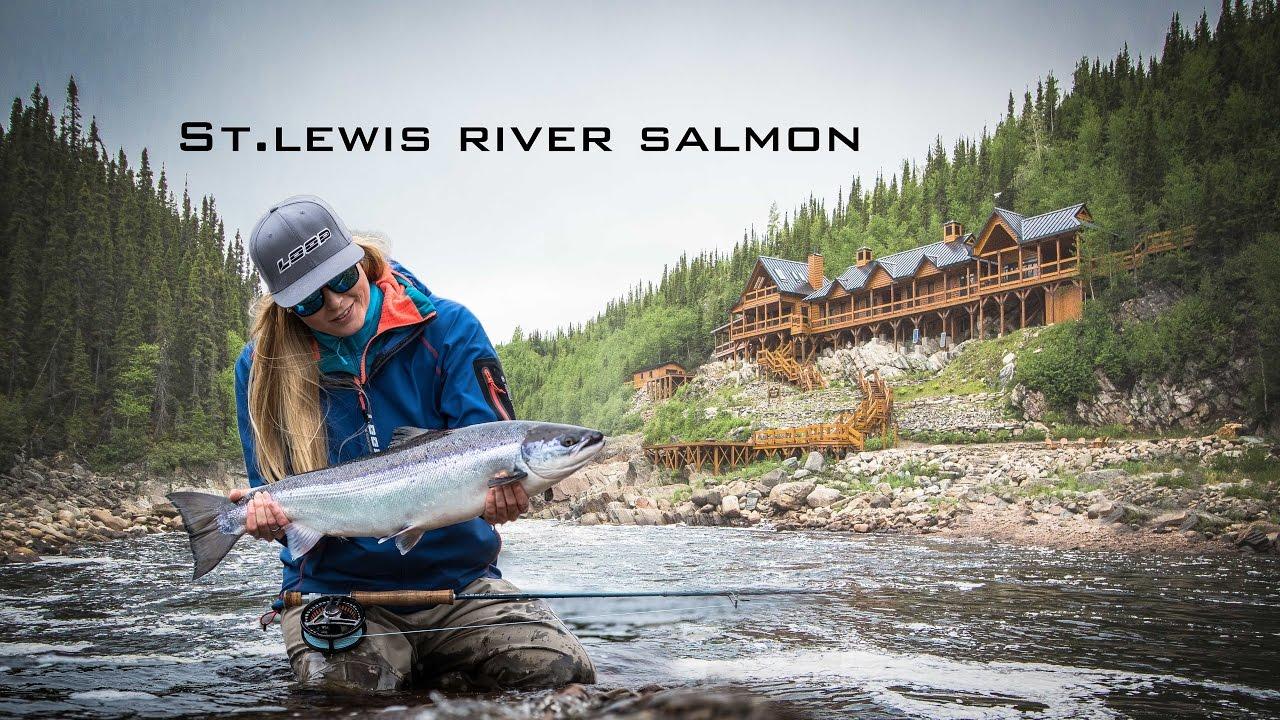 St. Lewis salmon