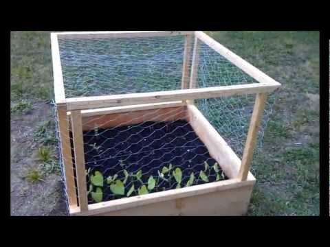 Raised Bed Cages YouTube