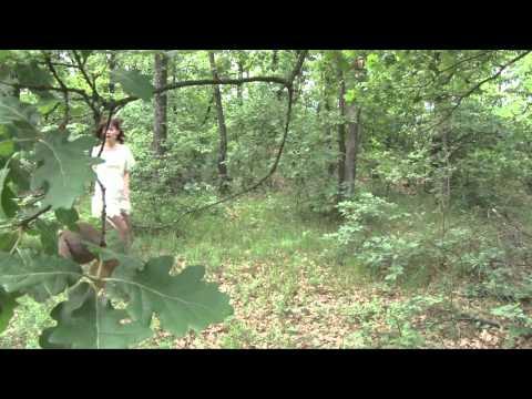 Trailer Film Sekira