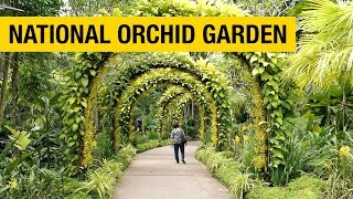 Orchid Paradise: National Orchid Garden in Singapore