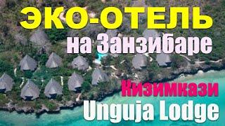 ЗАНЗИБАР Обзор отеля Unguja Lodge в Кизимкази Фрагмент из урока курса Джамбо Занзибар
