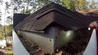 WILDLIFE EVICTORS home inspection for mice and rats
